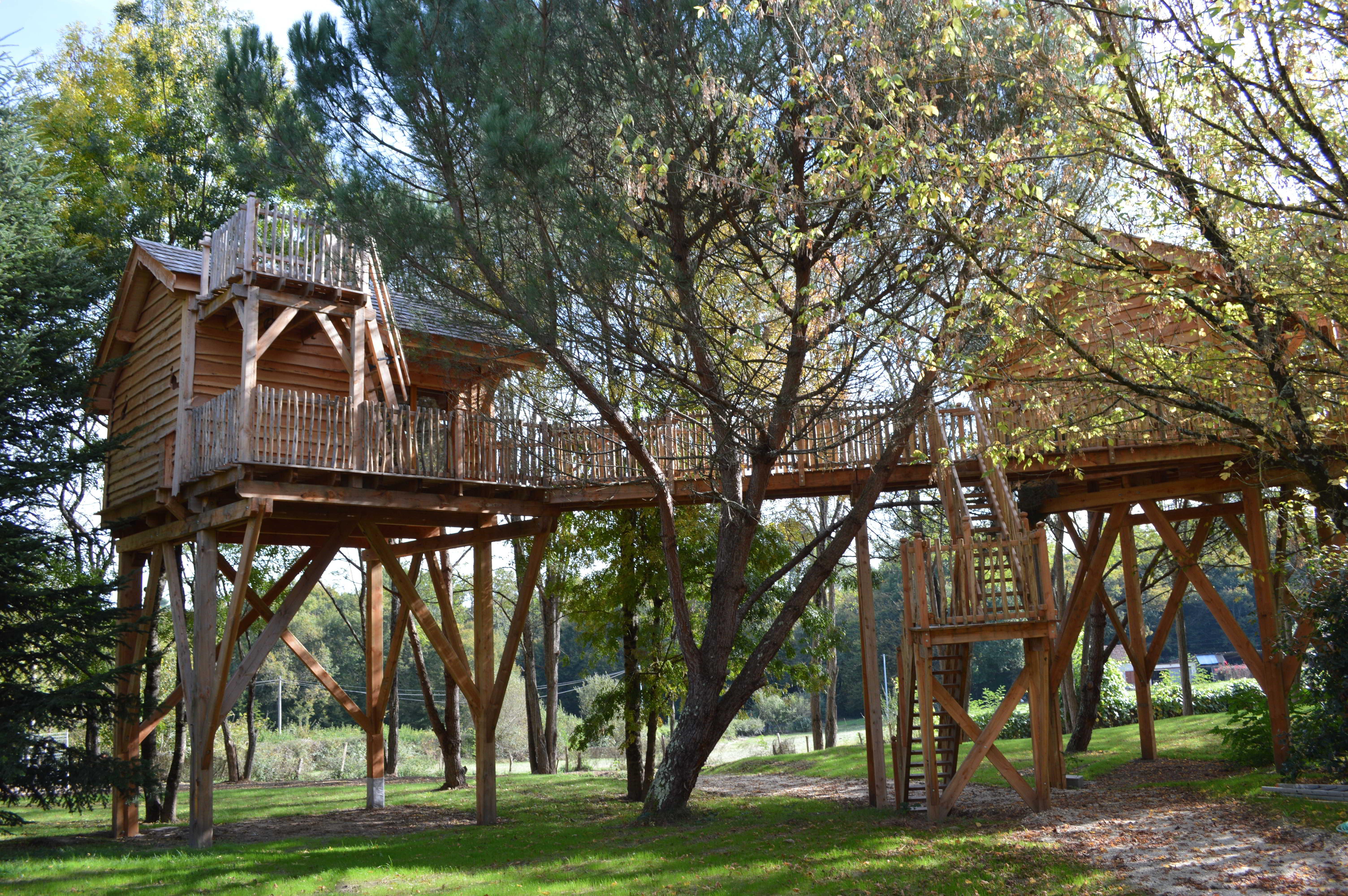 Cabane dans les arbres - Palombière